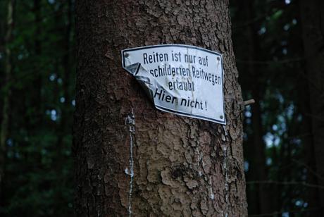 Reiten ist nur auf ausgeschilderten Wegen Reitwegen erlaubt!: HIER NICHT!