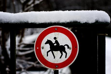 Verbot für Reiter: nächste Version