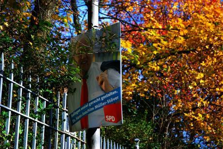 Ab in die Botanik: Reste der letzten Kommunalwahl 2009, die am 30. August stattfand