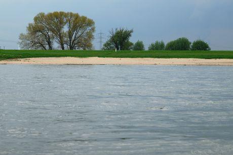 Wenig Wasser im Rhein