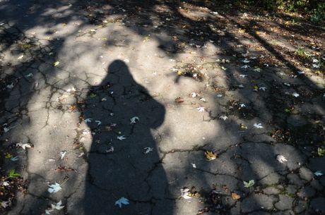 """Durch den Körper wird der Schatten bewegt."" - Lü Bu We"
