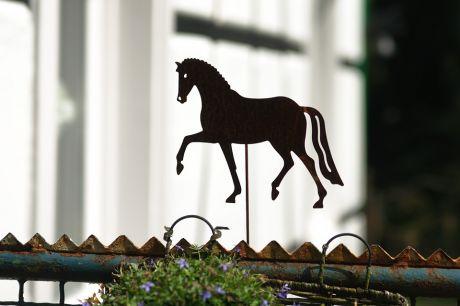 Schattenspiel mit Pferd
