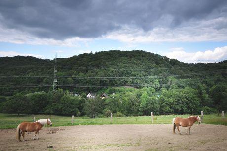 Blick ins Schellbergtal mit Sattelberg