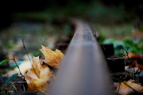 Schienenstrang: der Bergischen Museumbahnen
