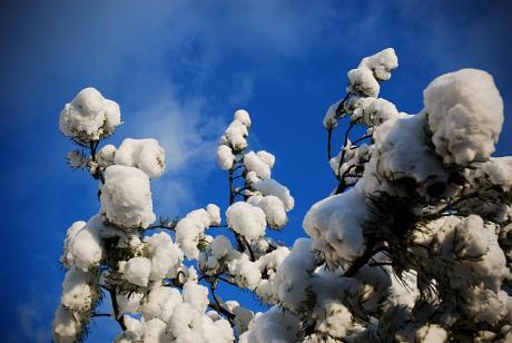 Schnee in Solingen
