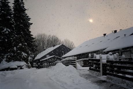 Schnee am: Pfaffenberg