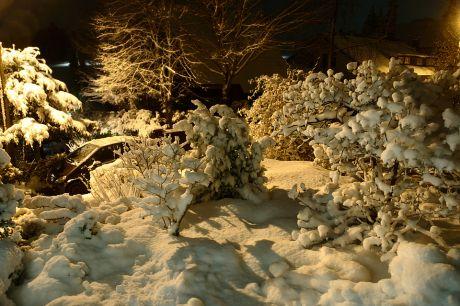 Schnee am Abend