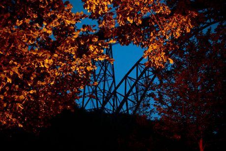 Laub mitten im Sommer: im Hintergrund die Müngstener Brücke