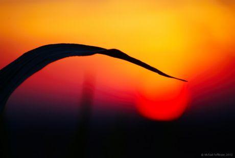 melancholischer  Sonnenuntergang