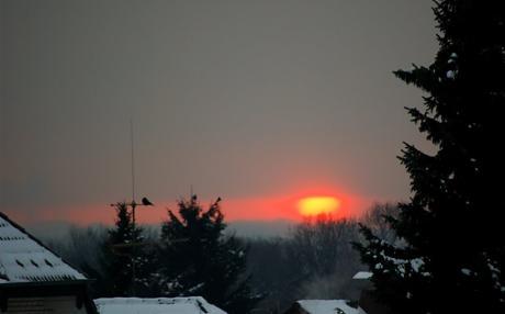 Sonnenaufgang: und aufmerksame Beobachter