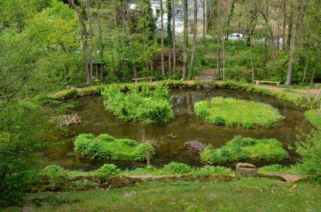 Gestauter Murbach am Kräutergarten