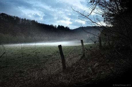 Wiesennebel im Tal der Wupper