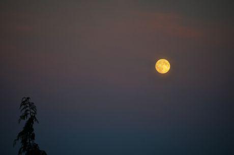 Sonnenuntergang mit Vollmond