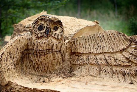 hölzerner Waldkauz: mit der Kettensäge aus dem vollen Stamm gesägt von Dennis Remiger