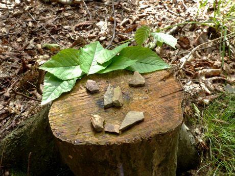 Waldschrat mit Krone: (c)nicht bei mir, aber bekannt