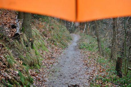 Unter dem Schirm: nach all den fiskalen Rettungsschirmen der letzten Monaten