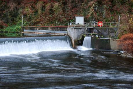 Wehr Neuenkotten: in Solingen-Unterburg. Angestaut wird die Wupper zur Nutzung der Wasserkraft.