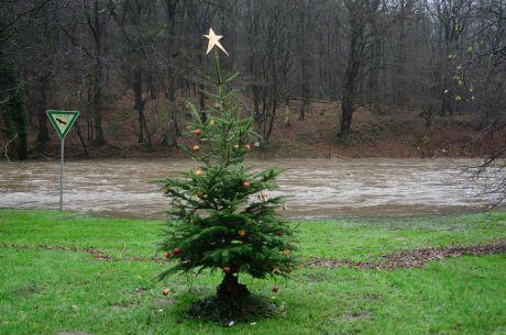 Weihnachtsbaum am Ufer der hochschwangeren Wupper