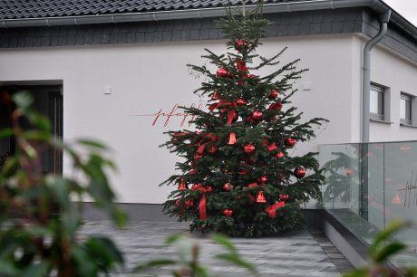 üppig geschmückter Weihnachtsbaum