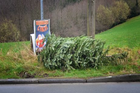 Weihnachtsbaum-Circus