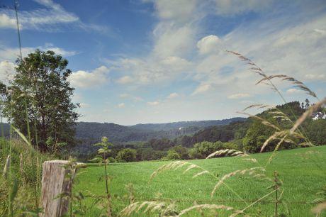 Blick vom Pfaffenberg ins Tal der Wupper: Richtung Widdert