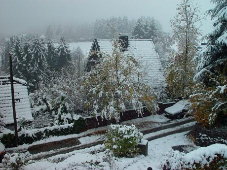 Wintereinbruch: Solingen, 14. November 2004