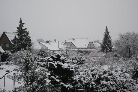 Ausblick: eben Winter, über Nacht hat er wieder etwas zugelegt