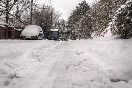 Winter 2009: Er kam an einem Montagmorgen