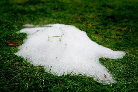 zerfließender Schneerest an Rasen