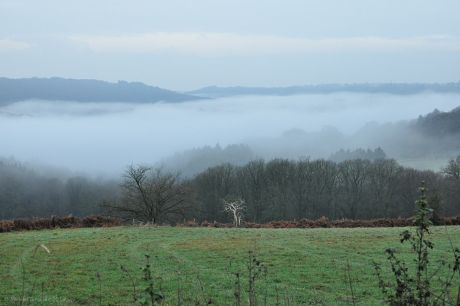 Burg Hohenscheid im Wupperhei: (kurz nach Sonnenaufgang am 28.11.2012)