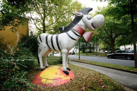 Das Zebra als Wahl-Maskottchen: Steht vor meinem Wahl-Lokal