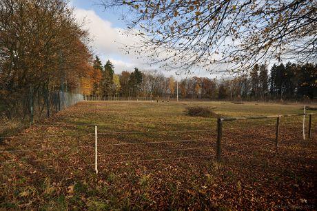 Ziegenwiese, nach der Umnutzung einer städtischen Sportanlage
