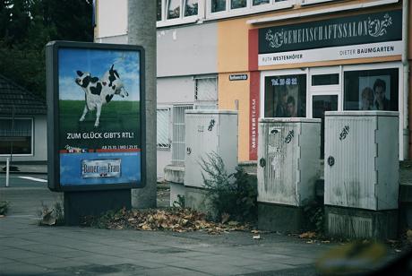 Bauer sucht Fru: dann freut sich die Kuh