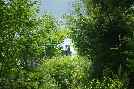 Solingen versinkt im wachsenden Grün